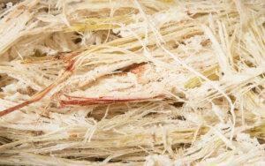 Bagasse: Zuckerrohrfasern